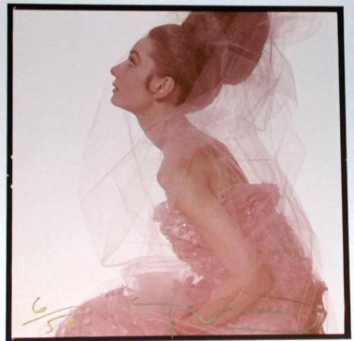 Audrey Hepburn profile