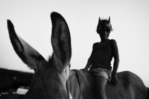 Sebastian LISTE Batman et son âne, Salvador de Bahia, 2009