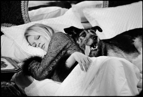 Brigitte Bardot Sieste canine 1970