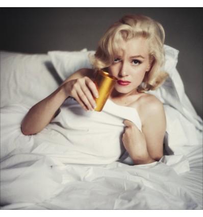 Livre Marilyn inédite