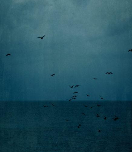 The Evening Seas